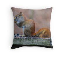 I Just Took One! Throw Pillow