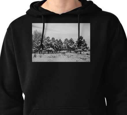 Snowy Winter Pine Trees In Black and White Pullover Hoodie