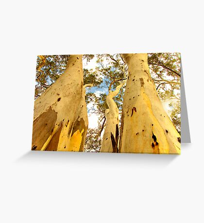 Giants Greeting Card