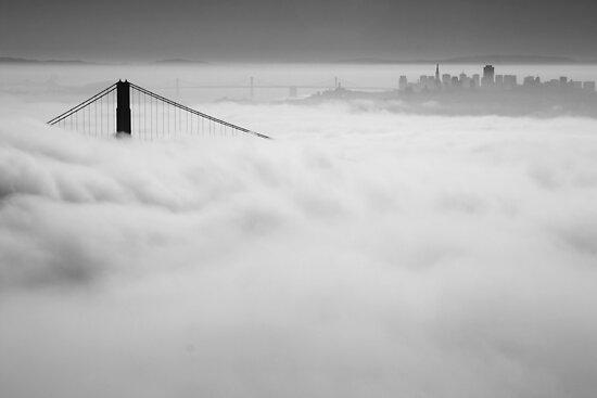 Dense Fog by Patricia Montgomery
