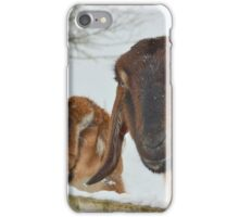Goats in the snow  iPhone Case/Skin