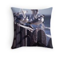 Battery Gulls, Charleston, SC Throw Pillow