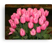 """Pink Tulips"" Canvas Print"