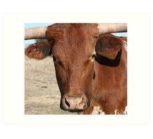 Bull! Art Print