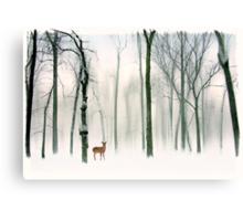 Forest Friend Canvas Print