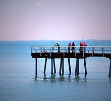 Fifteen Rods and Five Fishermen by robert murray