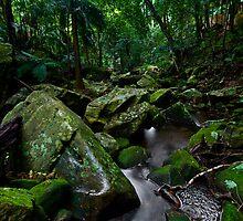 Gap Creek by Mark Snelson