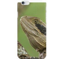 Australian Water Dragon (Intellagama lesueurii) iPhone Case/Skin
