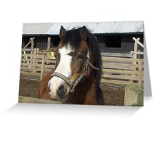 I am so handsome here! Greeting Card
