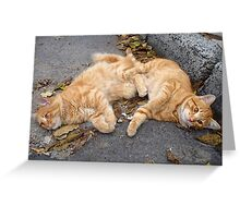 Feline alter ego  Greeting Card