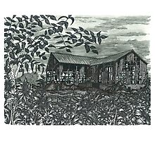 Sunflower Barn - www.jbjon.com Photographic Print