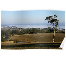 The Adelaide Hills Poster