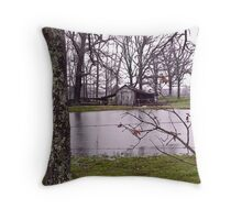 wet country Throw Pillow
