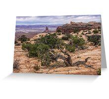 Canyonlands, Utah Greeting Card