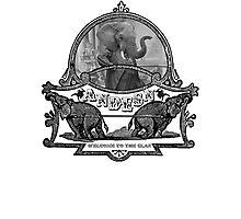 Elephantastic Photographic Print