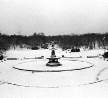 Bethesda Fountain in Central Park by Daniel Sorine