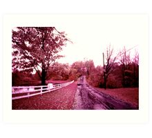 Infrared landscape. Easton, Connecticut, fall 1973 Art Print
