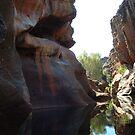 Cobbold Gorge by Chris Cohen