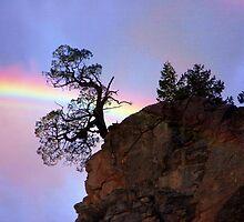 A Rainbow Somewhere by CarolM