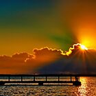 """Daybreak Splendor"" by Phil Thomson IPA"