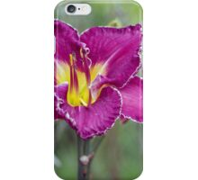 Daylilies and Cornflowers iPhone Case/Skin