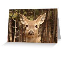 I'm Ready For My Closeup Now. Greeting Card