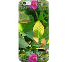 Hyde Hall Collage Featuring Wild Rose and Irises iPhone Case/Skin