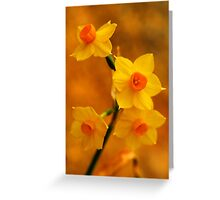 Spring in All Its Glory Greeting Card