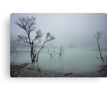 Misty White Crater Canvas Print