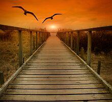 Boardwalk 2 by Alan Steele