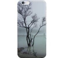 Misty White Crater iPhone Case/Skin