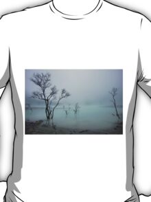 Misty White Crater T-Shirt