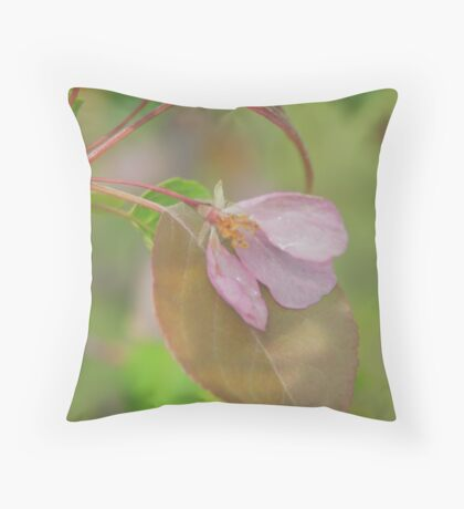 Soft colours of Spring Throw Pillow