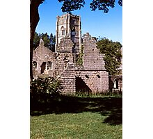 Fountains Abbey 9 Photographic Print