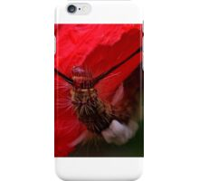 Hairy caterpillar on a Scotsman's Purse iPhone Case/Skin