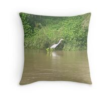 Strolling the River Banks Throw Pillow