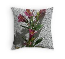 Stucco Flowers Throw Pillow