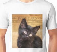 """Beautiful Black Kitten"" Post Cards Unisex T-Shirt"