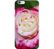 Rose Love iPhone Case/Skin