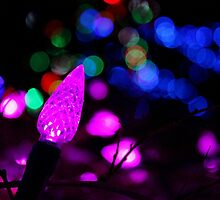 Light the Night III by Kathleen Daley