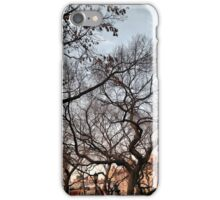 Behind The Trees From Union Square iPhone Case/Skin