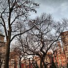 Behind The Trees From Union Square by joan warburton