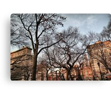 Behind The Trees From Union Square Canvas Print