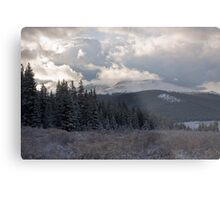Last day of Summer in the Colorado wilderness... Metal Print