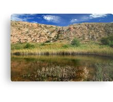 Pasture Lake, Bottomless Lakes State Park, NM Metal Print