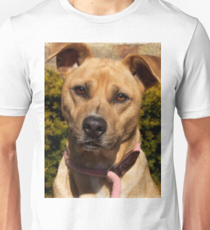 Handsome Pit Bull  Mix Unisex T-Shirt