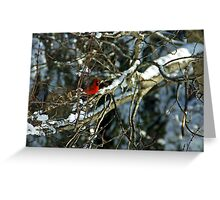 Poetic Winter Greeting Card