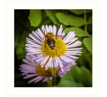Successful Bee is Successful Art Print