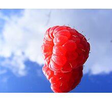 rasberry sky Photographic Print