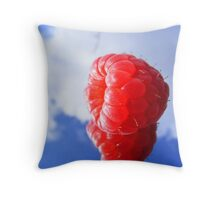 rasberry sky Throw Pillow